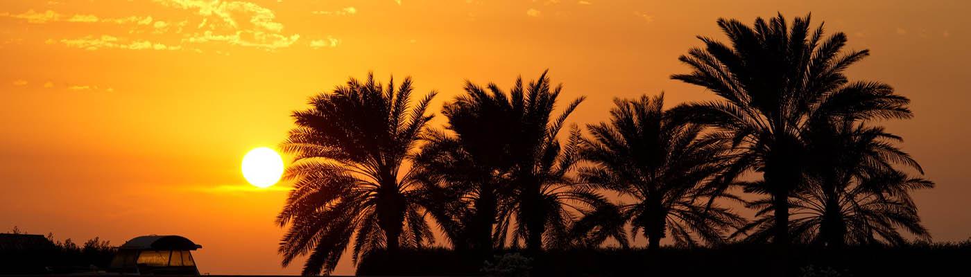 Grand Prix Jeddah